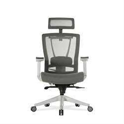 Vifah ActiveChair Ergonomic 7-way Executives Mesh Office Chair