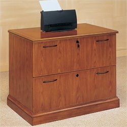 DMi Furniture Belmont 2 Drawer Lateral Wood File Cabinet