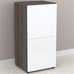 1-Door Storage Module in White Lacquer & Ebony
