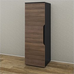 1 Door Storage Unit in Black and Walnut