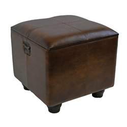 Faux Leather Ottoman Trunk in Brown
