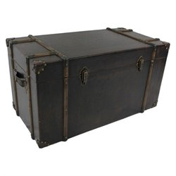 Trunk in Antique Brown (Set of 2)