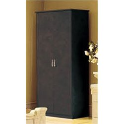 Camelgroup Barocco 2 Door Wardrobe in Black and Gold