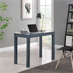 Computer Desk with Drawer in Gray
