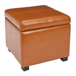 Safavieh Elizabeth Beech Wood Leather Storage Ottoman in Saddle