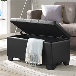 Elements Eli Storage Ottoman in Black