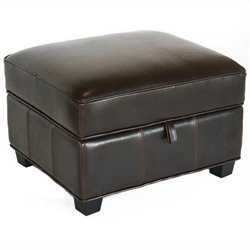 Agustus Storage Ottoman in Dark Brown