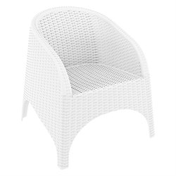 Compamia Aruba Resin Wickerlook Chair (Set of 2)