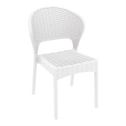 Compamia Daytona Resin Wickerlook Dining Chair (Set of 2)