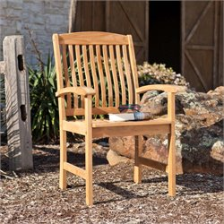Southern Enterprises Waverly Patio Arm Chair in Light Brown (Set of 2)