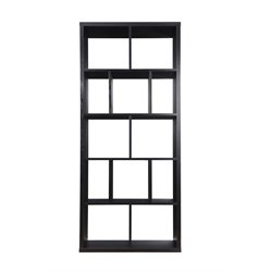 Furniture of America Amity Modern Bookcase in Black