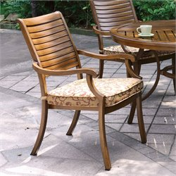 Furniture of America Celine Slat Back Outdoor Swivel Chair