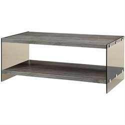 Bowery Hill Wood and Glass Coffee Table in Gray