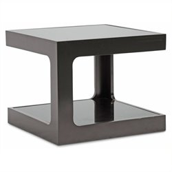 Bowery Hill Glass Top End Table in Black