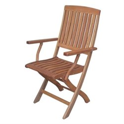 Bowery Hill Wood Patio Folding Chair (Set of 2)