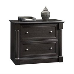 Bowery Hill 2 Drawer File Cabinet in Wind Oak