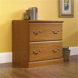 Pemberly Row 2 Drawer File Cabinet (1)