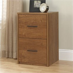 Pemberly Row 2 Drawer Wood Vertical File Cabinet in Oak