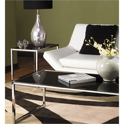 2 Piece Glass Top Coffee Table Set in Black