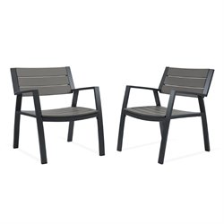 Real Flame Anson Patio Chair in Gray (Set of 2)