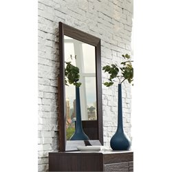 Coaster Fenbrook Mirror in Dark Cocoa