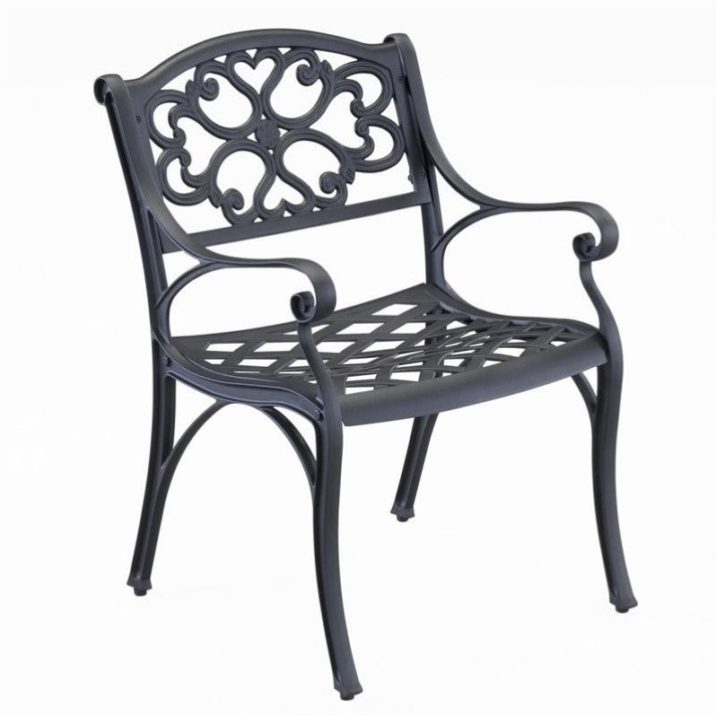 Biscayne Outdoor Dining Arm Chair in Black Finish (Set of 2)